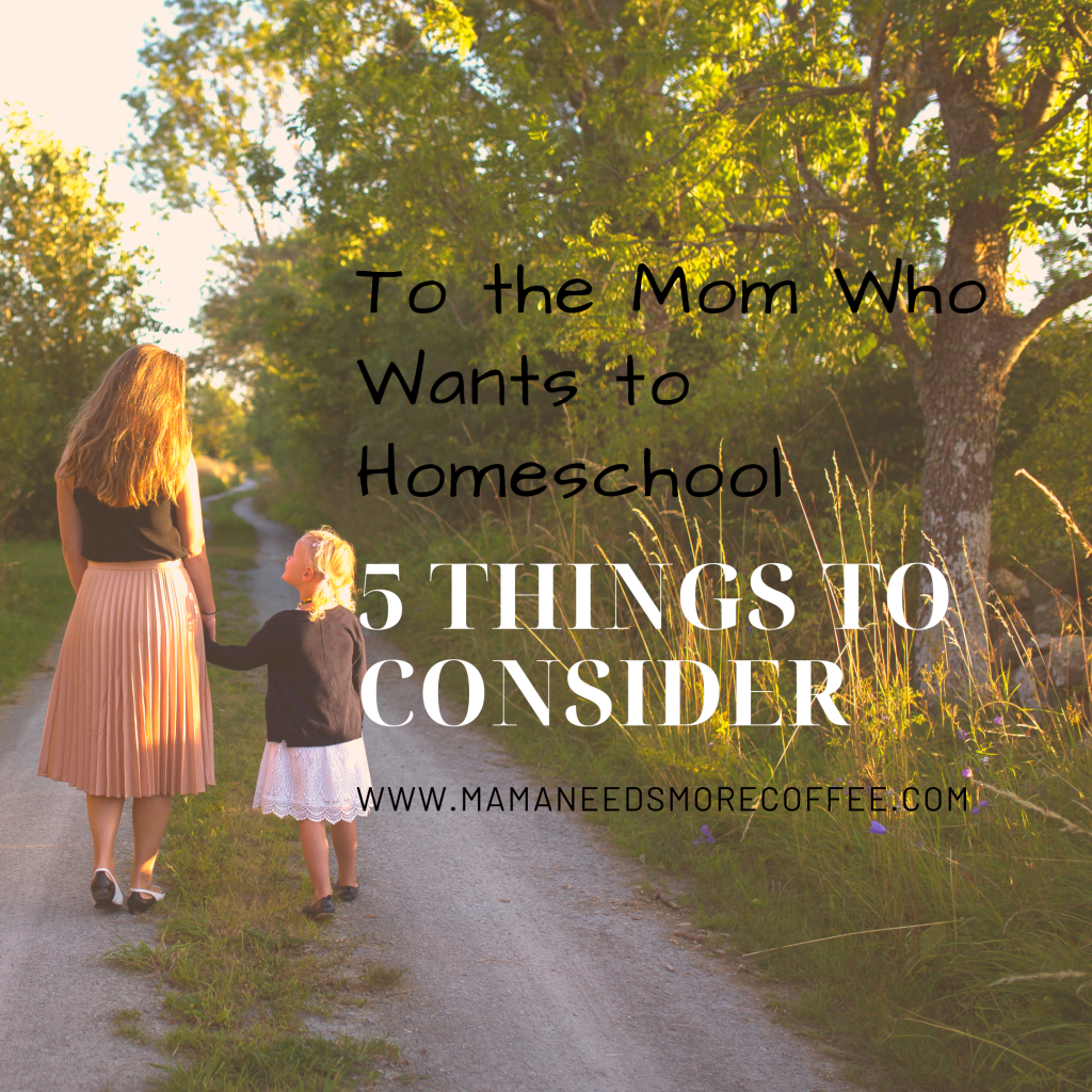To the Mom Who Wants to Homeschool - 5 Things to Consider